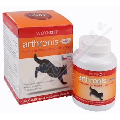 Arthronis ACUTE CANIS sýrová příchuť tbl.60